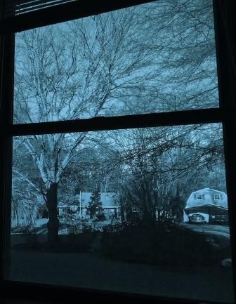 winter window cropped