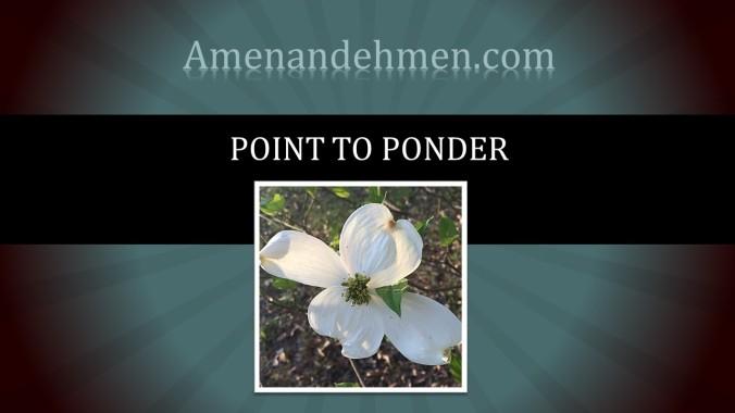 Point To Ponder amenandehmen