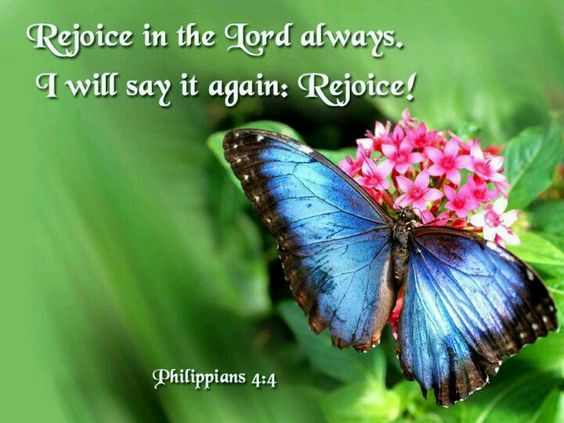rejoice-in-the-lord-photo-from-web
