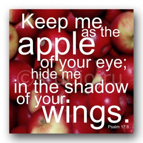 apple of eye scripture