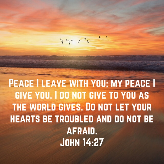 Thankfulness and Peace Scripture Image 2