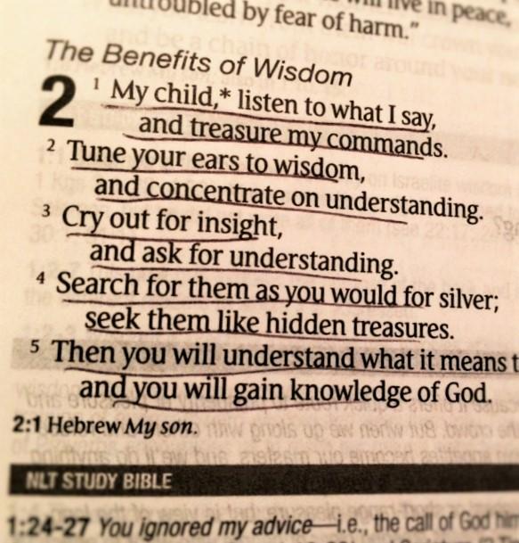Proverbs 2. 1-6